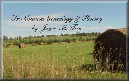 History & Genealogy of the Population of Town of Veteran, Chemungveteran town